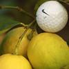 140mm, f/4, 1/50 sec...Lemon Balls
