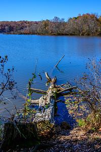 Lake Raleigh 2