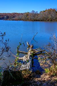 Lake Raleigh 4