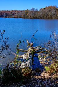 Lake Raleigh 3