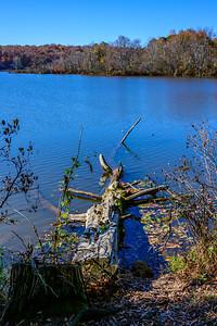 Lake Raleigh 1