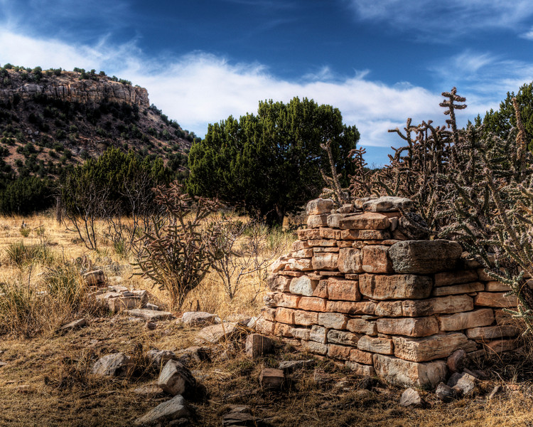 Rock wall with Cholla. (HDR)