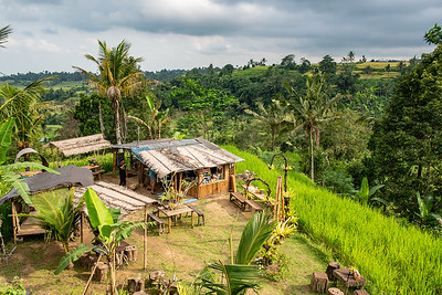 Market stall on the edge of the terraced rice fields of Bali