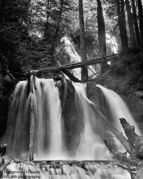 Panther Falls (Lower), Gifford Pinchot National Forest, Wind River Valley, WA