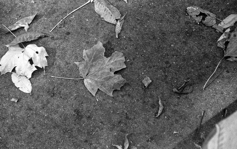 Both rolls Neopan 400 developed in DD-X.<br /> May and October 2010.