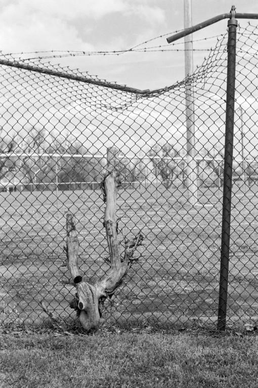 Idle baseball field