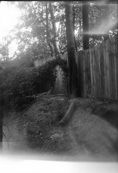 I took these shots around my complex and along the bike path that runs along it's edge.  Here you can see the light leaks start to build up.