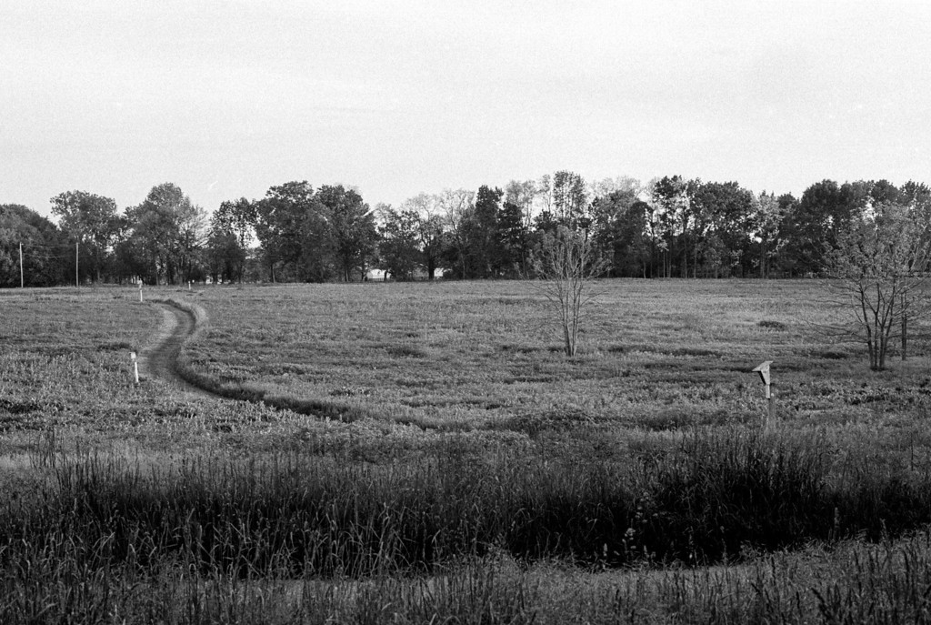 I've been very busy lately so it was nice to finally take the time to shoot a roll of film.  I took the camera to one of my usual locations, Sugarcreek meto park jsut south of Dayton.