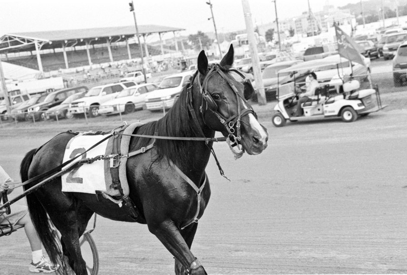 I shot this roll at the 2011 Montgomery County Fair here in Dayton.  The odd thing about this fair is that the main parking lot is in the middle of race track.  So to get in and out you have to wait for the horses to pass before you can move on.