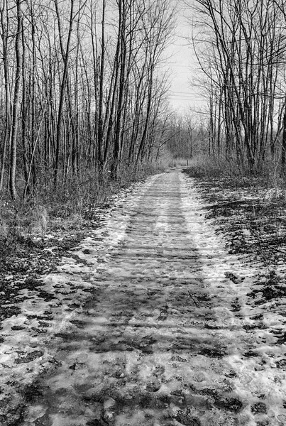 I took the camera out to Sugarcreek one sub-freezing day this winter.  When it's this cold I never see many people out, yet the trails are full of footprints.