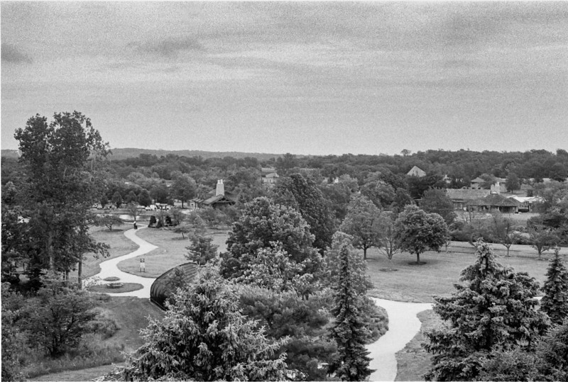 View from the tower overlooking the arboretum.