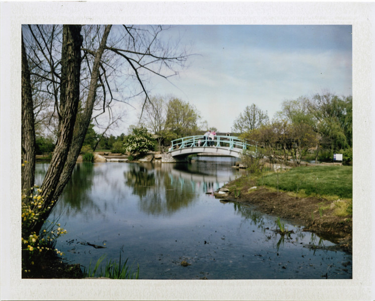 Cox Arboretum with my Polaroid 250