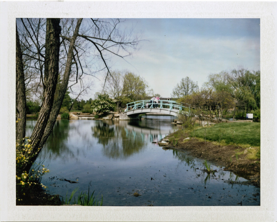 Cox Arboretum with my Polaroid 250