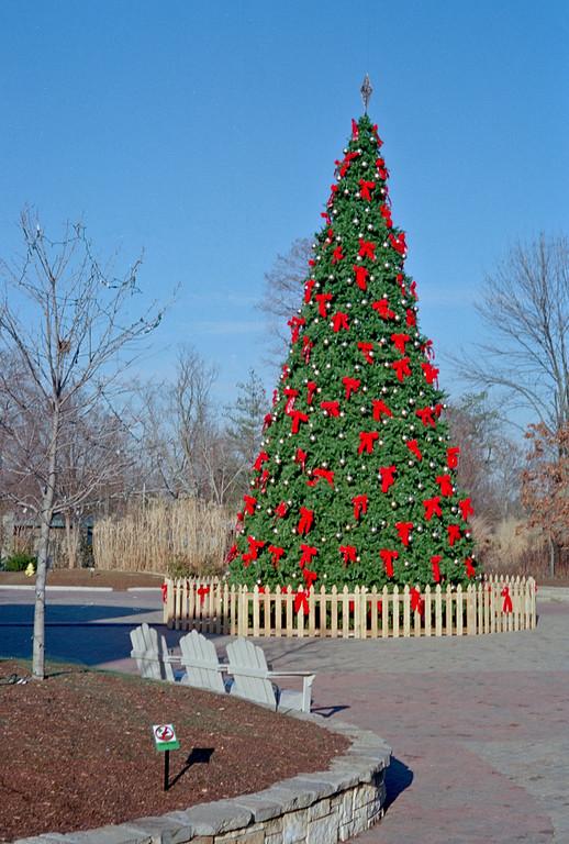 Zoo Christmas tree