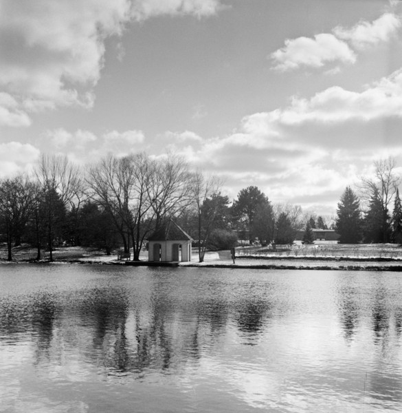 Winter finally managed to produce the first real snowfall here in the Miami Valley, so I took my new TLR to Cox Arboretum.