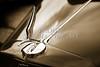 1933 Chevrolet Chevy Sedan Classic Car Radiator Cap in Sepia 3168.01
