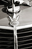 1937 Ford Pickup Truck Classic Car Emblem Photograph in Sepia 3309.01