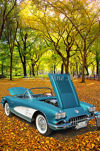 1958 Corvette by Chevrolet In the Park in a Color Photograph 3494.02