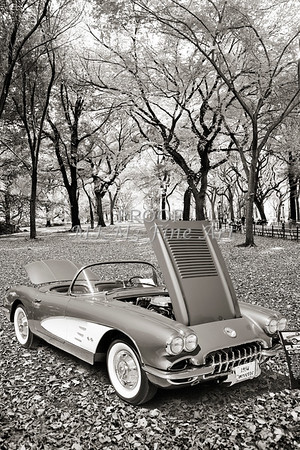 1958 Corvette by Chevrolet In the Park in a Sepia Photograph 3494.01
