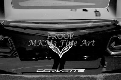 1974 Chevrolet Corvette Sepia Rear End photograph 3473.01