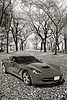1974 Chevrolet Corvette in a park in black and white 3466.01