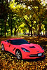 1974 Red Chevrolet Corvette In the Park Painting Print 3479.02