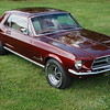 1967 Mustang Ford Car Photo
