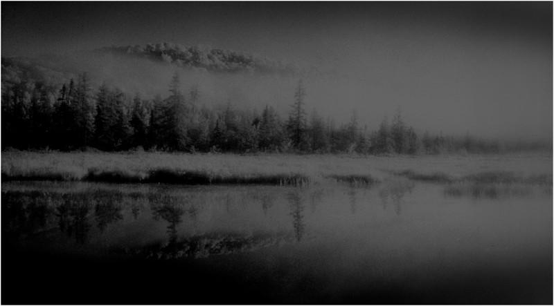 Adirondacks Forked Lake Shoreline IR Film July 1991