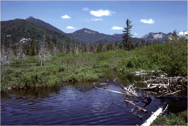 Adirondacks Boreas Ponds Headwaters July 1978