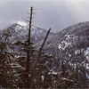Adirondacks Mt Colden North Summit from Morgan Potter Trail March 1979