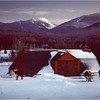 Adirondacks North Elba High Peaks Winter Farm Cows January 1977