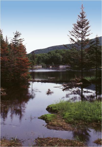 Adirondacks Marcy Dam Pond July 1995