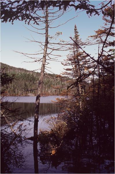 Adirondacks Lake Tear of the Clouds 1 July 1995