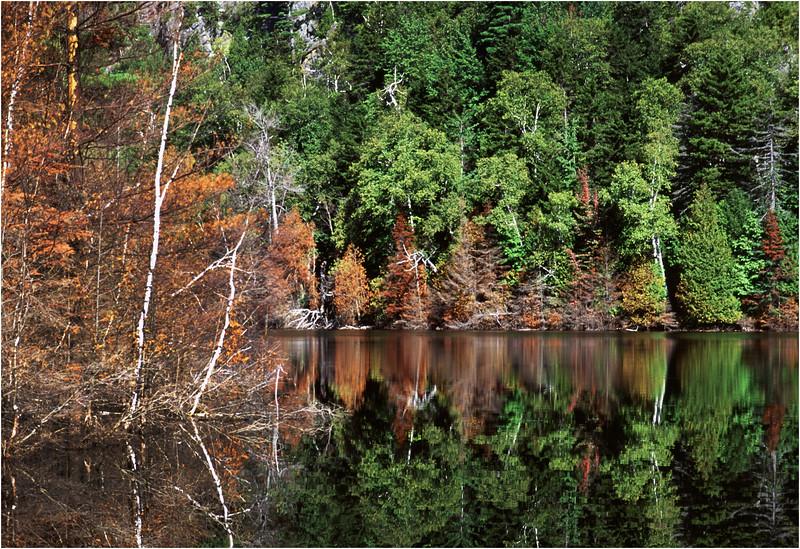 Adirondacks Giant Mt Trail Washbowl 2 August 1992