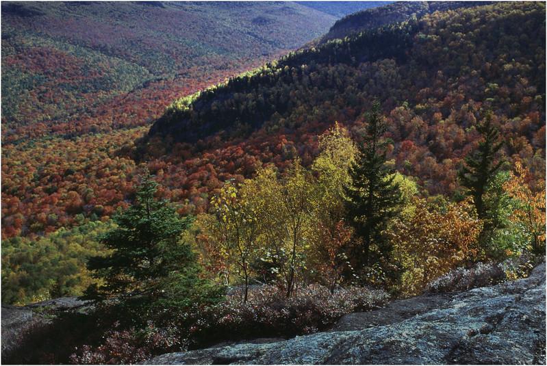 Adirondacks  Brothers Trail View September 1995