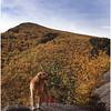 Adirondacks Brothers Trail Mcki October 1995