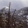 Adirondacks Mt Colden North Summit from Morgan Potter Trail March 1979