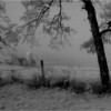 Arlington VT Farm IR Film May 1983