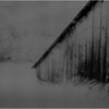 Washington County NY Abandoned Barns 4 IR Film June 1984