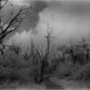 Smokey Mts Tennessee Appalachian Trail 2 IR Film July 1996