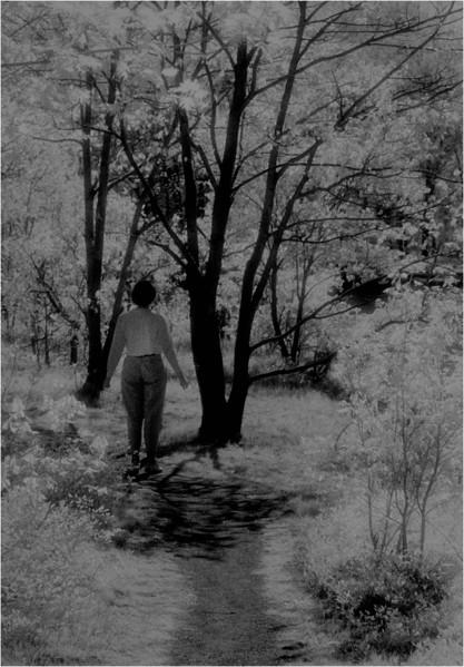 Cohoes NY Peebles Island Trees 4 Kim Bessette  IR Film May 1993