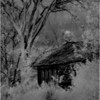 Washington County NY Abandoned Home IR Film June 1982