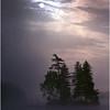 Adirondacks Forked Lake Sunrise Island and Loon August 1981