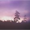 Adirondacks Forked Lake Sunrise Skyline July 1978