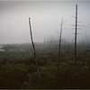 Adirondacks Long Lake Mist Shaw Pond  2 August 1997