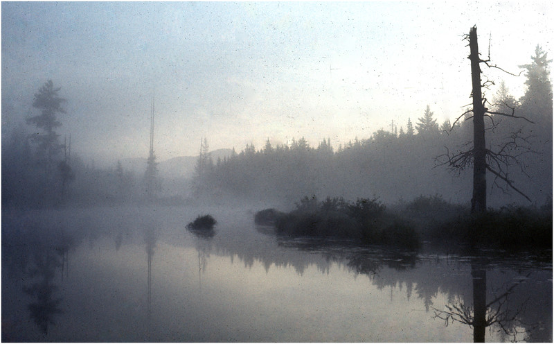 Adirondacks Forked Lake Morning Mist North Bay Inlet 1 August 1976