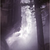 Yosemite Ca Vernal Falls 2 June 1980