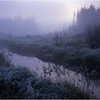 45 Adirondacks Beaver Meadow Brook Frost Morning 2 October 1998