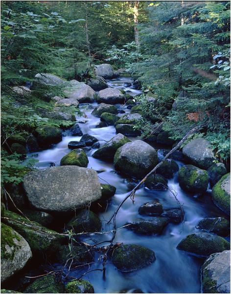 45 Adirondacks Rock Lake Tributary July 1997