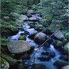 45 Adirondacks Rock Lake Tributary July 1997